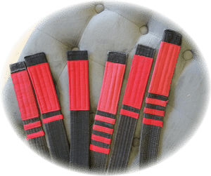 2d_Belts